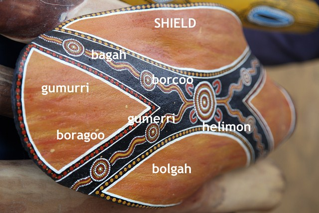 condamine alliance aboriginal languages project.jpg